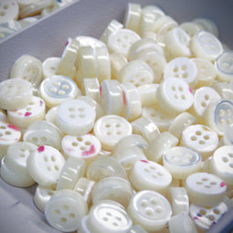 mother of pearl buttons, Trocas , Australia